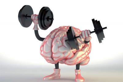 muscle-cerveau