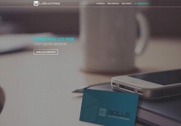 shopweb_portfolio_620x431